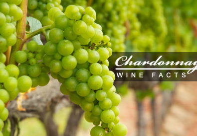 chardonnay wine facts and statistics