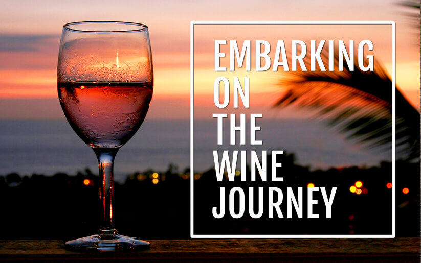 embarking-on-the-wine-journey