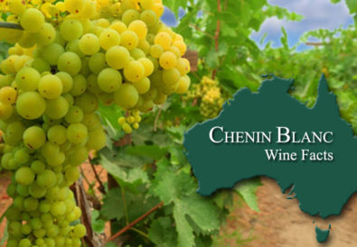 Chenin Blanc Wine Facts