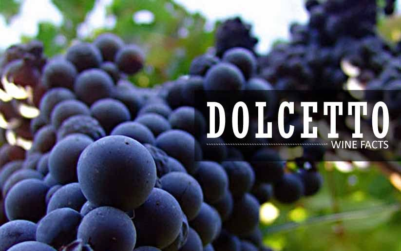 Dolcetto wine facts
