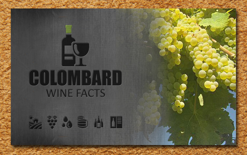 Colombard wine facts