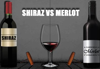Shiraz vs Merlot