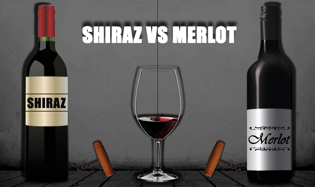 Shiraz vs Merlot