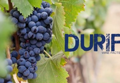 Durif Wine Facts