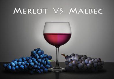 Merlot Vs Malbec Wines