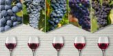 Red Wine Regions