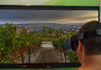Virtual Reality Vineyard Tour