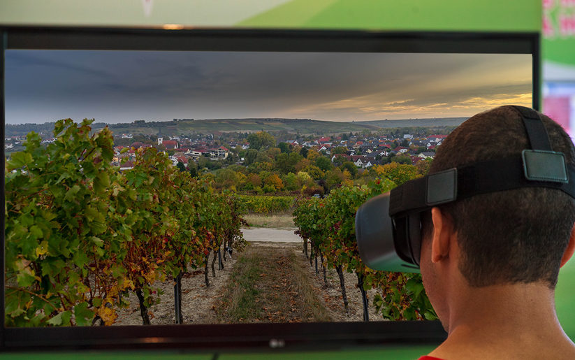 Virtual Reality Vineyard Tour