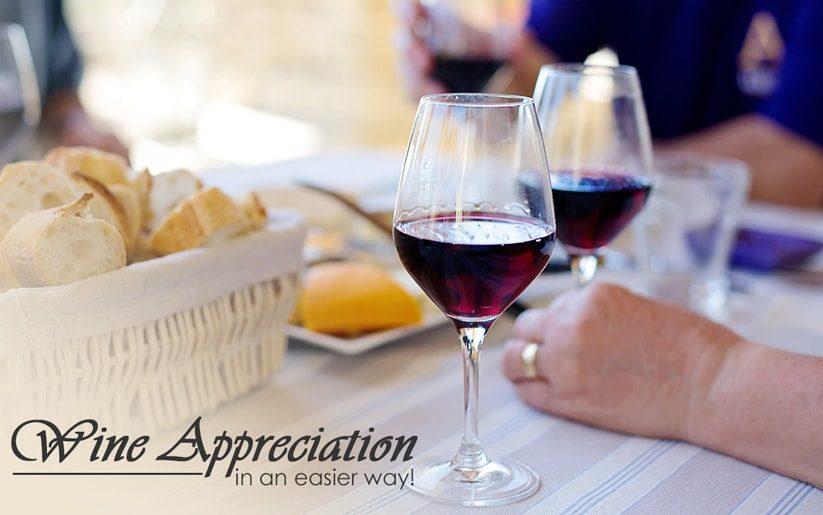 Wine Appreciation Made Easy