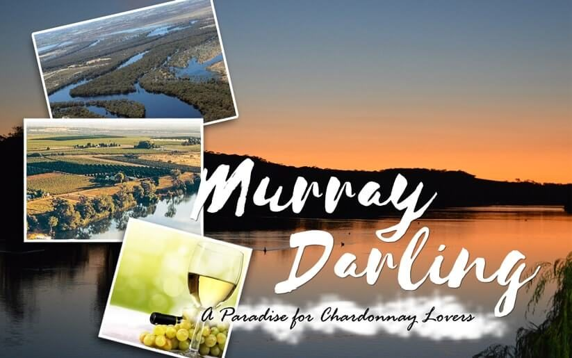 Murray Darling A Paradise for Chardonnay Lovers