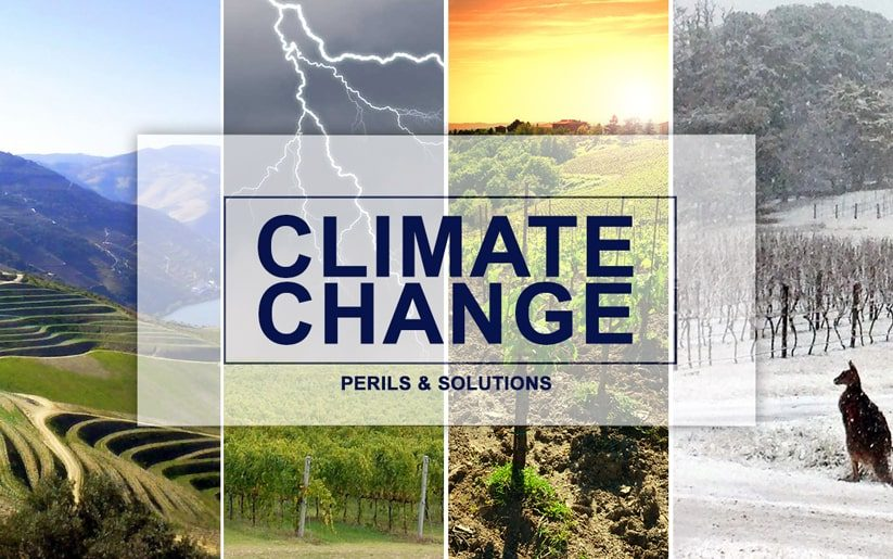 Climate change and winemaking
