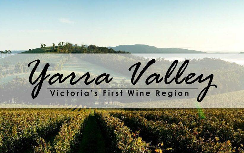 Yarra Valley: Victoria's First Wine Region
